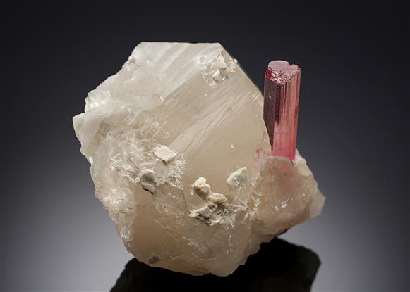 Tourmaline with Lepidolite on Quartz