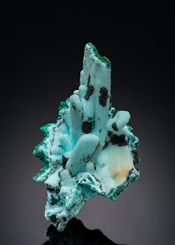Chrysocolla ps. after Malachite ps. after Azurite with Quartz
